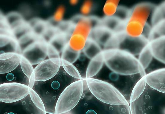 La Universidad de Vigo y Alkanatur realizan un estudio para paliar la diabetes tipo 1